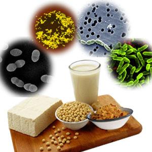 peran probiotik untuk kesehatan